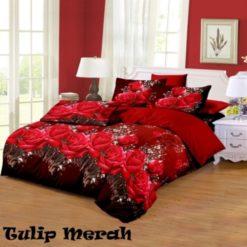 tulip-merah