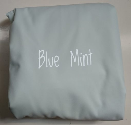 blue-mint