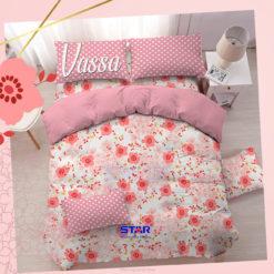 Vassa-salem-star-premium